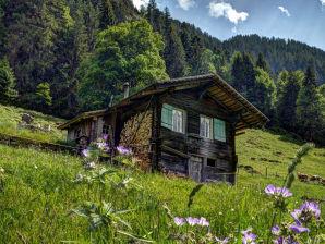 Berghütte - Kirschbaumhütte