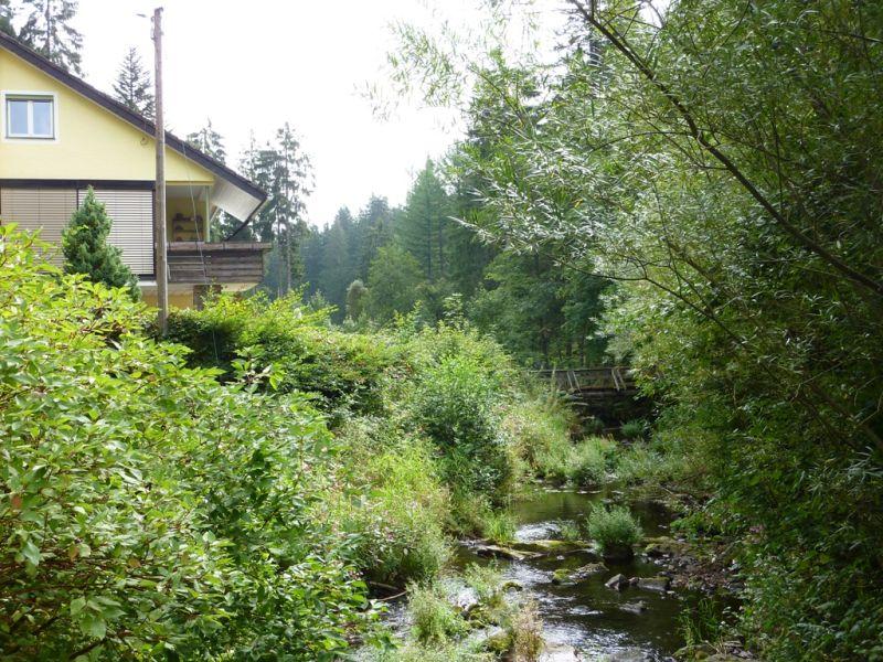 Ferienwohnung Schwarzwald total