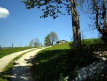 Berghütte Thaler Hütte