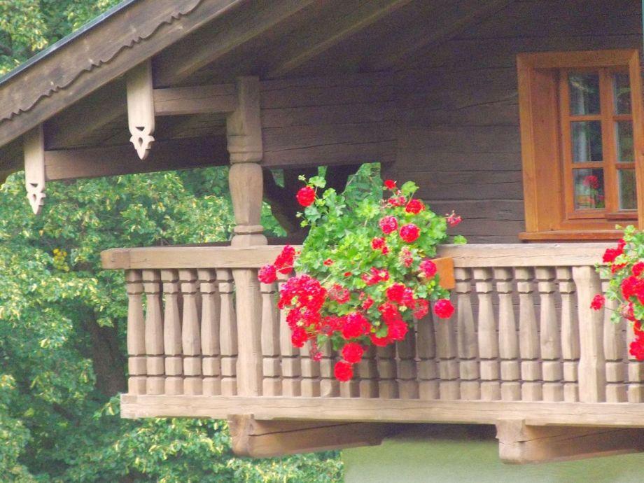 Waldlerhaus-rekonstruiert