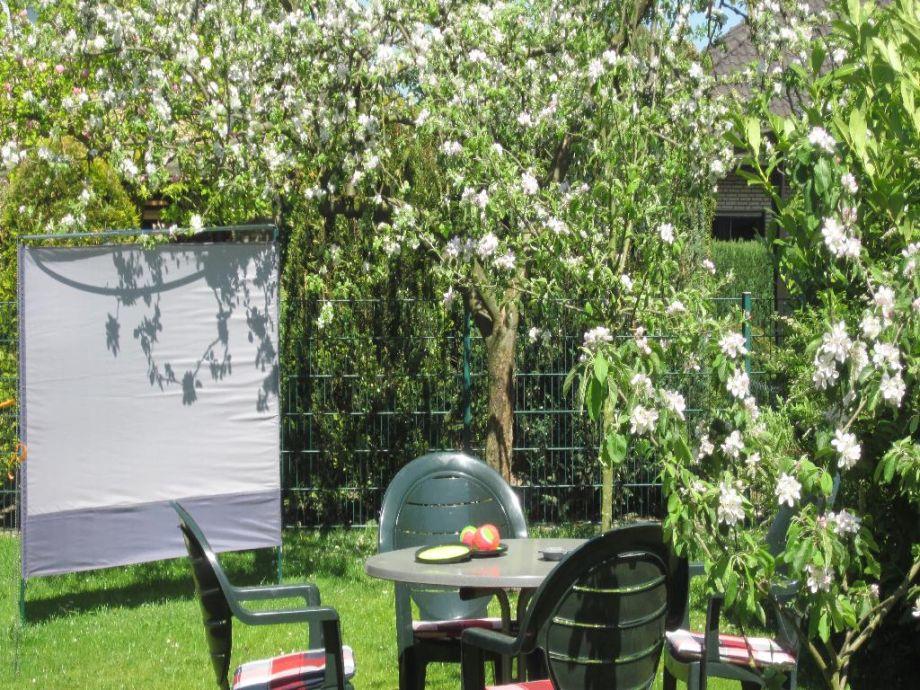 Ein Träumchen unter dem Apfelbaum