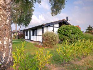 Ferienhaus Silbersee