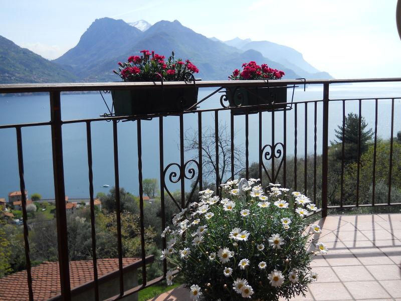 Ferienwohnung Buena Vista 2