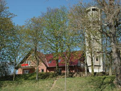 Kranich am Wasserturm Röbel / Müritz