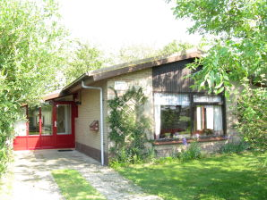Ferienhaus Zandloper - Gentiaan Nr. 16