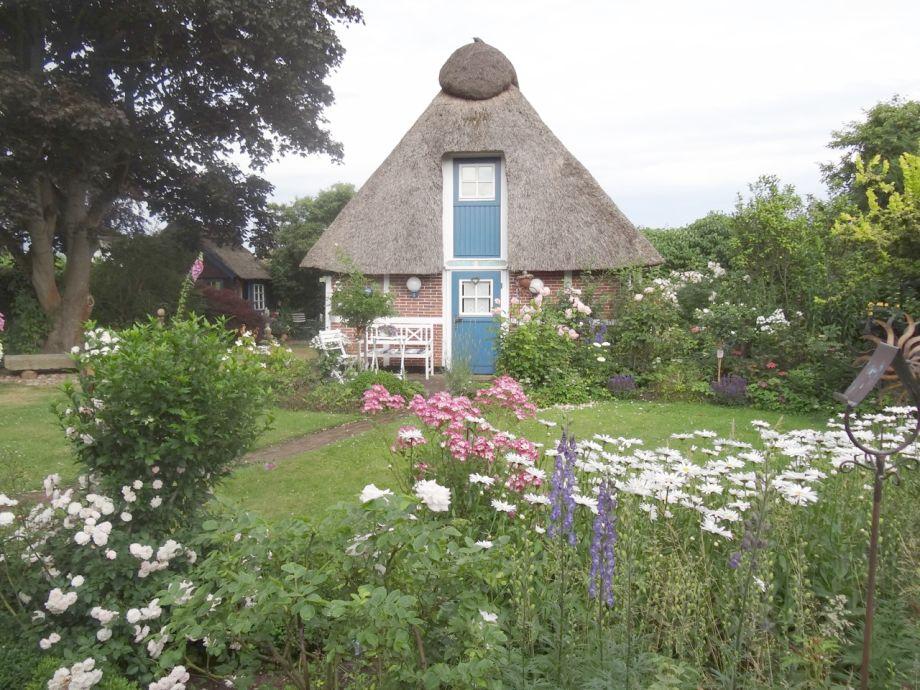 Wunderschöner grüner Garten