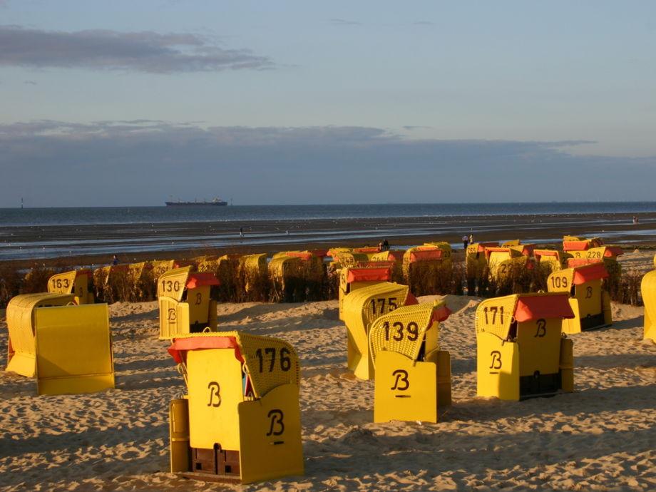 Ferienwohnung Haus Atlantic Cuxhaven 4 Nordsee Cuxhaven Direkt Am Sandstrand Seesicht Frau