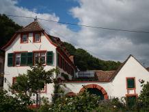 Ferienwohnung Hirschhorner Weindomizil