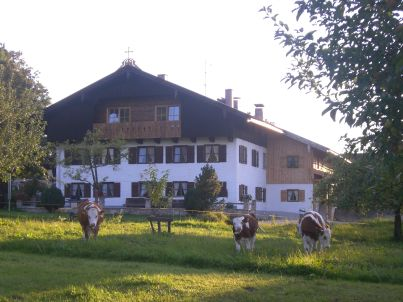 Lerlhof Gindelalm