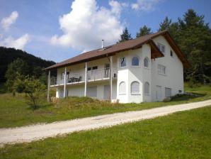 Ferienwohnung Villa zu Hausen