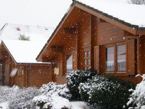 Ferienhaus Silbermöwe im Ferienpark Harmsen