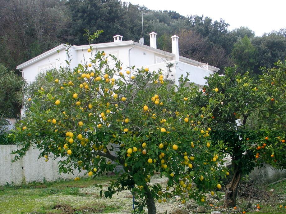 Ferienwohnung Villa Giulia im Winter