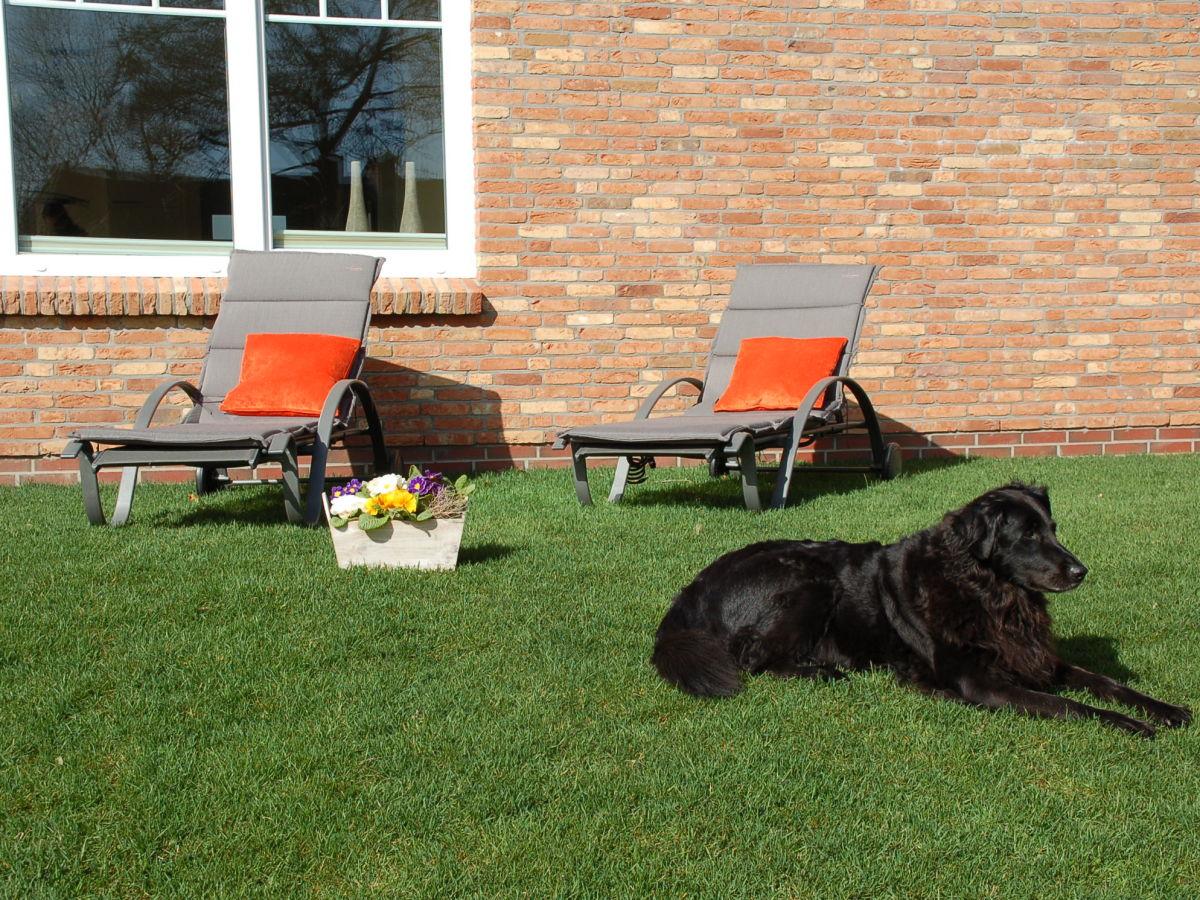 Nordsee Wellness Ferienhaus mit Hund, Deutschland Nordsee Nordfriesland Schleswig Holst. - Firma ...
