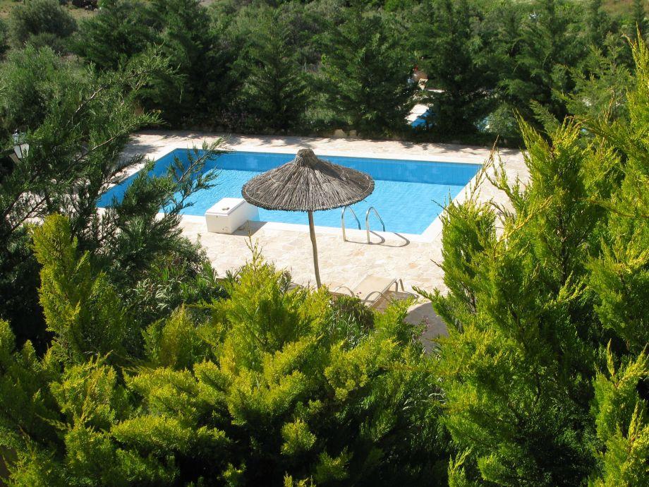 """privater Pool mit """"grünem"""" Sichtschutz"""