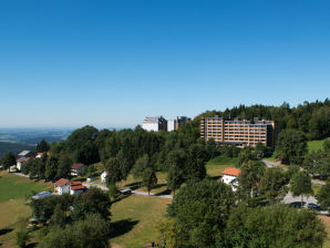 Panorama-Ferienwohnung Geyersberg