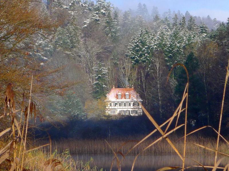 Cottage Maison forestière