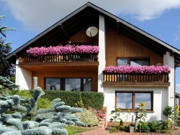 Holiday apartment Eifel Vulkaneifel Ulmen