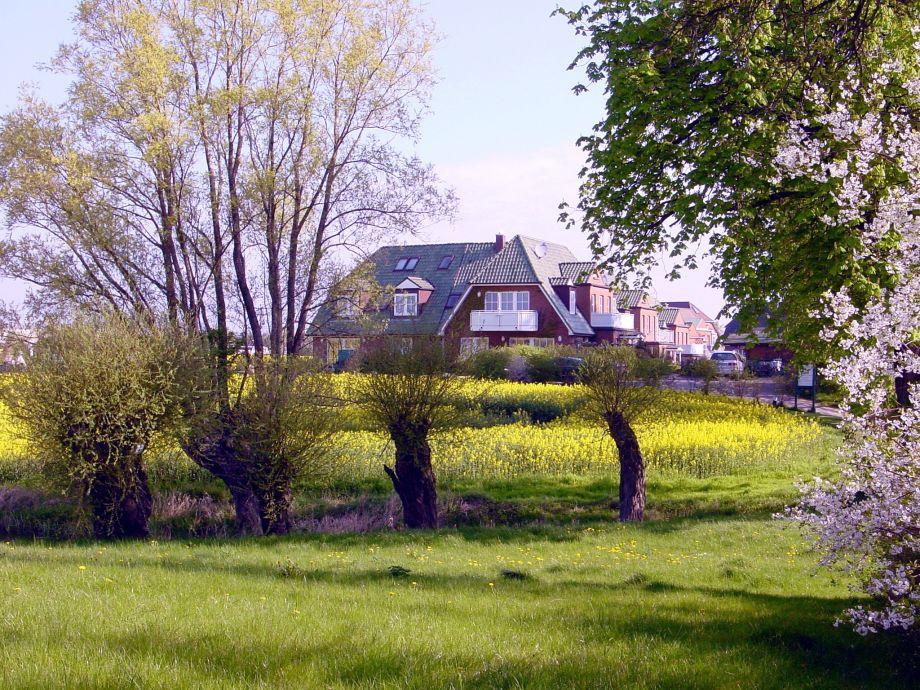 Haus Jenny im Mai