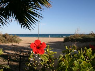 Solyventura® Luxusbungalow direkt am Strand