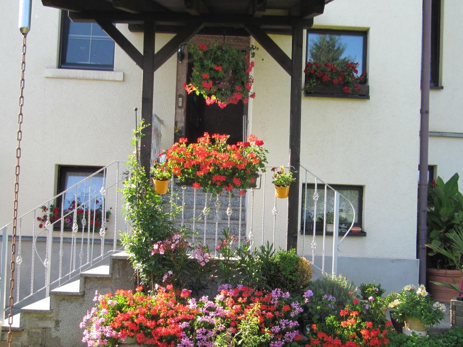 Eingangsbereich / Hinterseite Haus