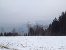 Ferienwohnung Schwarzwald - Loft