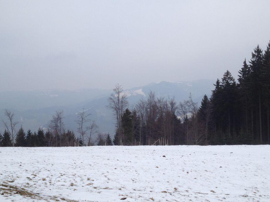 Winter auf dem Schauinsland