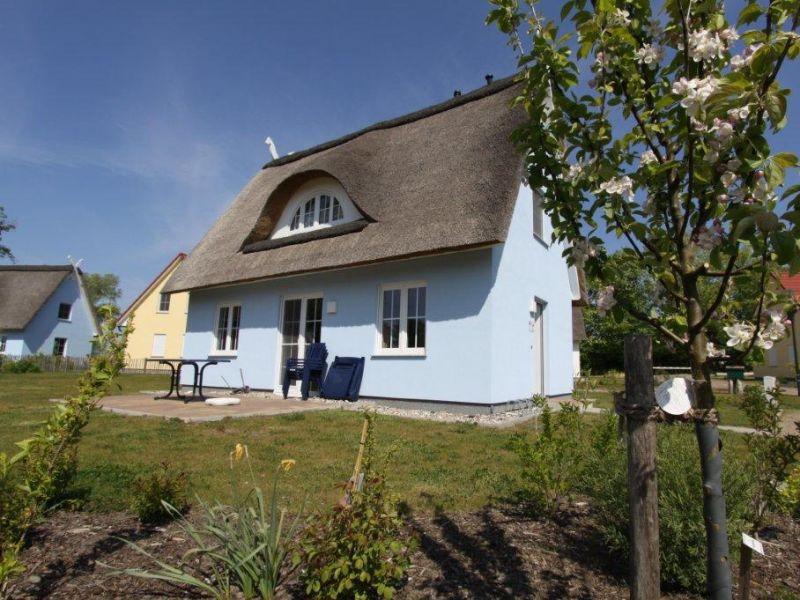 Reetdachferienhaus Storch B5