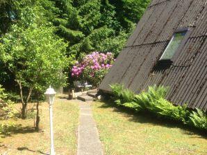 Ferienhaus Heidezeit