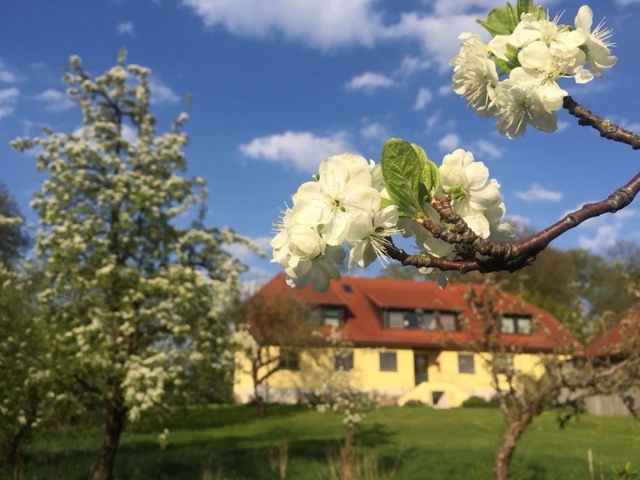 Das Naturferienhaus liegt im idyllischen Wendhof