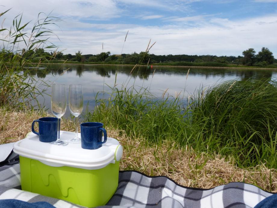 Picknick an der Oder