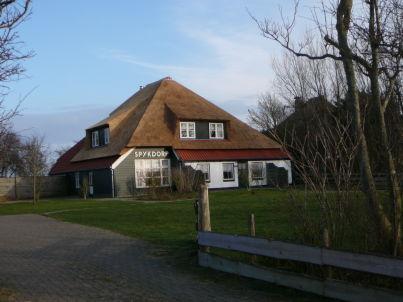 Gemütliche Ferienwohnung auf Texel, große Wohnung