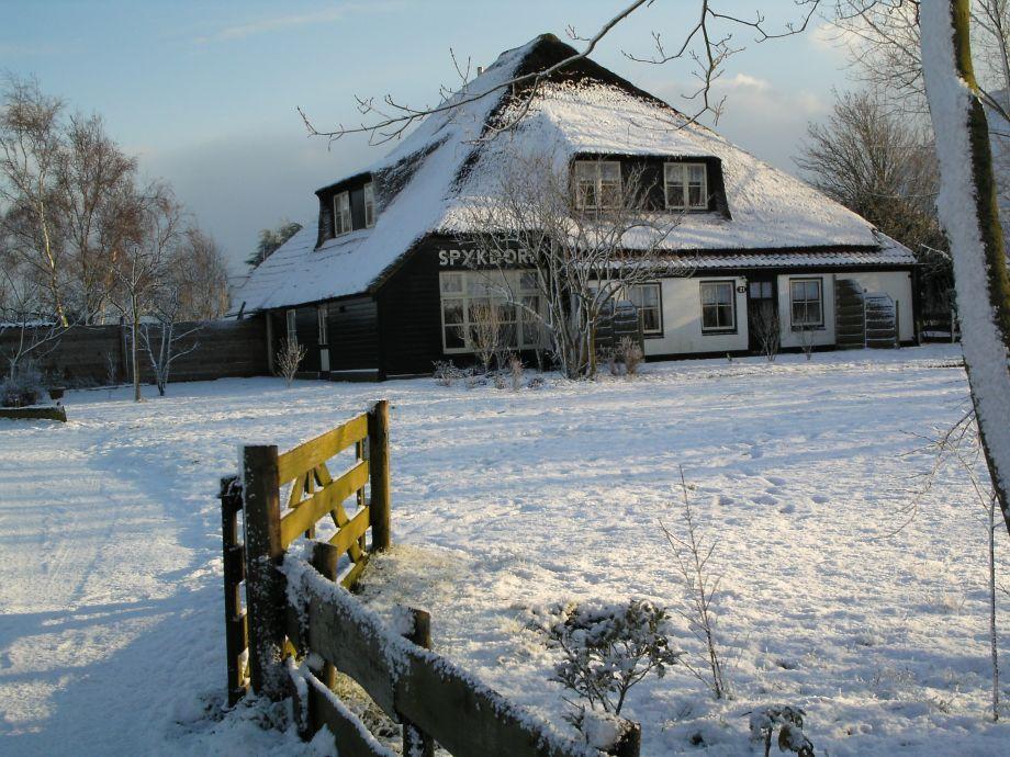 Wohnung Streichen Im Winter : Gemütliche Ferienwohnung auf Texel, große Wohnung, Texel, Nähe
