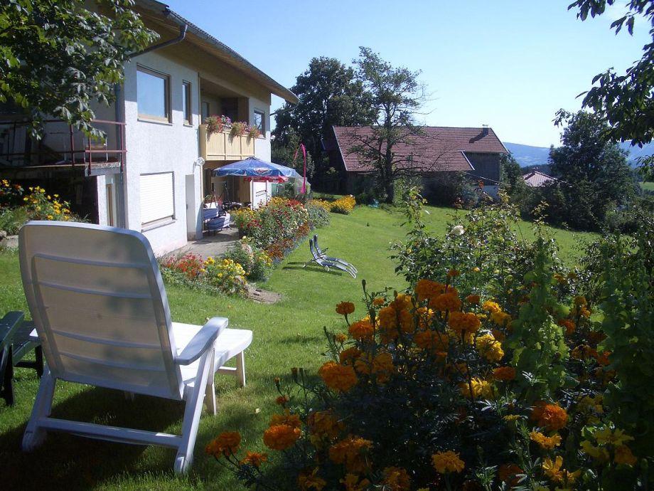 Blick über Tagetismeer auf die Terrasse u Liegewiese