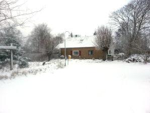 Ferienhaus Schleiwelle