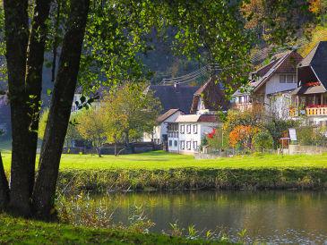 Ferienwohnung Wellness Pension am Rain