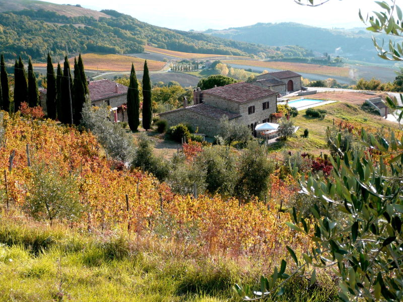 Holiday house L'Aione, Azienda Agricola