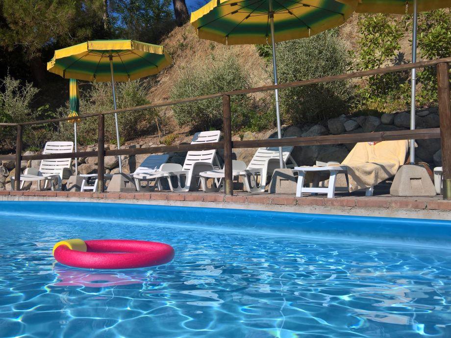 Frisch, sauber und beliebt - der Pool