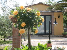 Gästehaus Loft  Oliva
