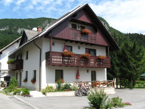 Holiday apartment Na vasi - Winter