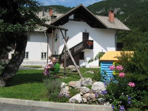Ferienwohnung Na vasi - Bohinj