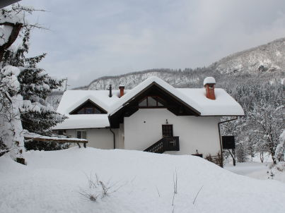 Na vasi - Bohinj