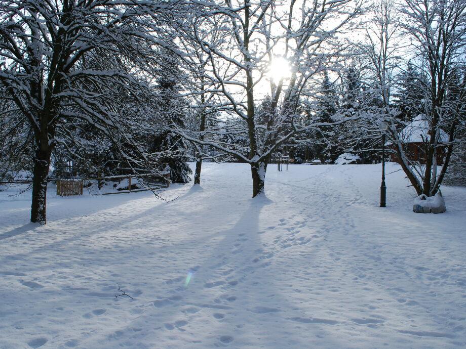 Winter im Parkgelände