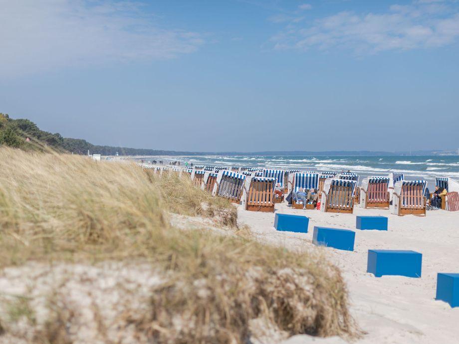 Strandkorb am strand  Apartment Strandpromenade - 1. Reihe am Meer inkl. Strandkorb ...