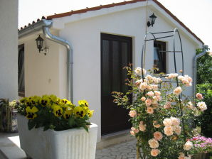 Holiday house Licul