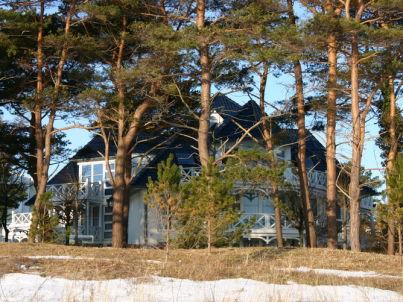 Binz: Sterntaucher im Haus Strelasund