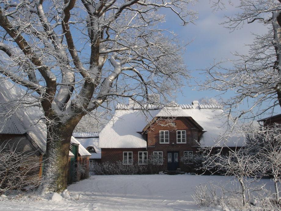 Dreiseithof-Iskier - ein Wintermärchen