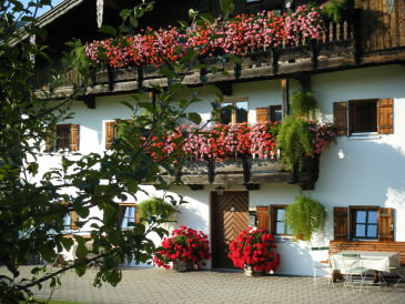 Holiday apartment Spitztstein on the Bergerhof