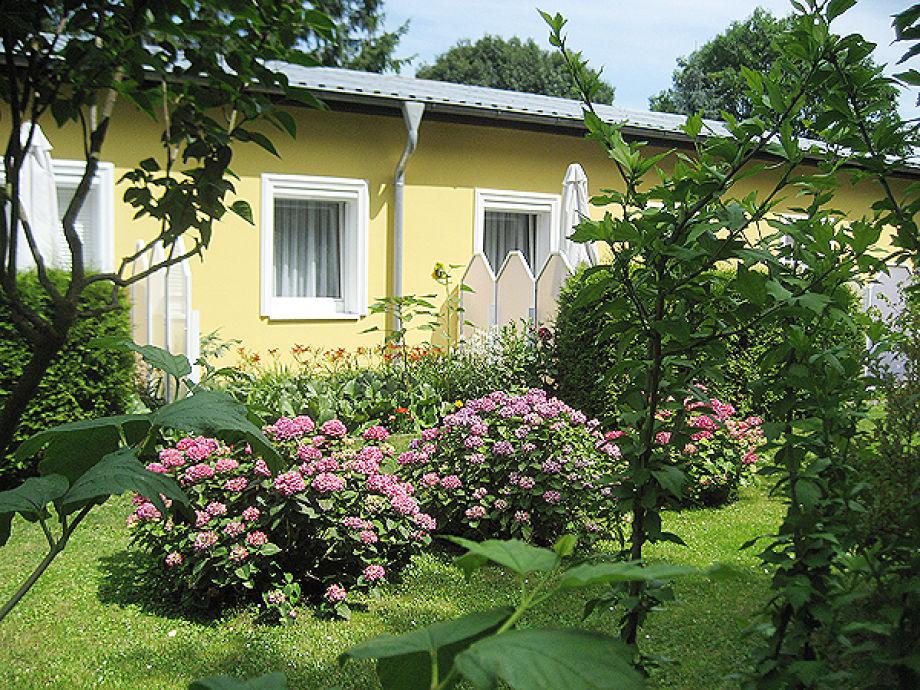 """Ferienwohnung Haus """"Am Wald"""" Whg 12 Insel Usedom Seebad"""