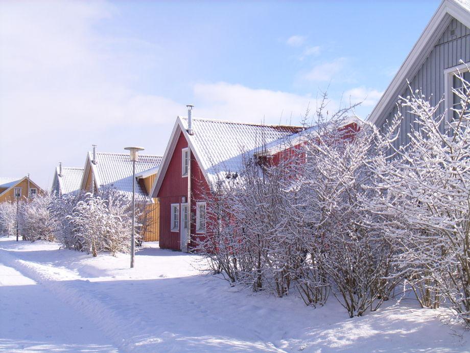 "Winter in the holiday village ""Müritzufer"""