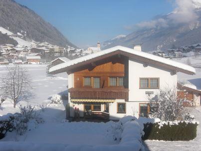"""Alpenveilchen im Haus """"Pfeifer"""""""